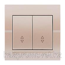 702-3030-106 Выключатель 2клавишный проходной Deriy