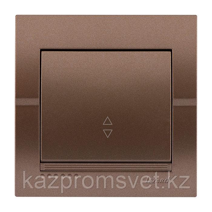 702-3131-105 Выключатель 1клавишный проходной Deriy