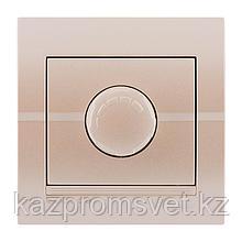 702-3030-157 Диммер 1000W скрытой установки Deriy