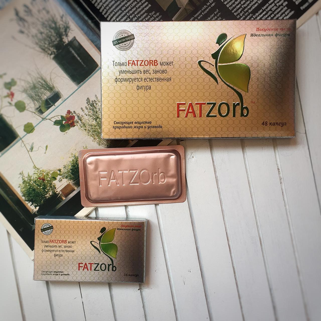 Жиросжигатель Fatzorb (Фатзорб)