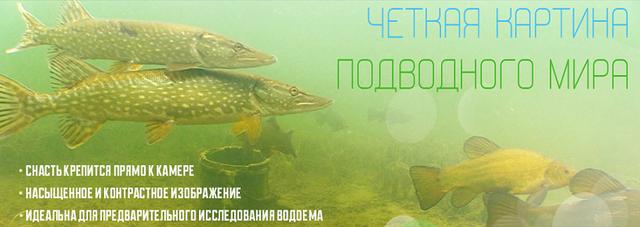 http://video-sfera.net/image/data/hi-tec/fishka_703-07.png