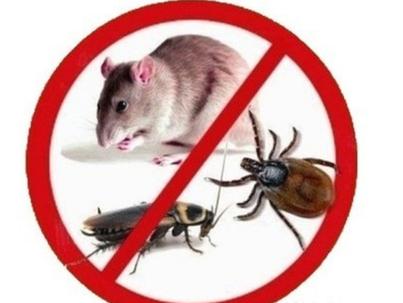 Средства защиты человека, дома и сада от насекомых и грызунов