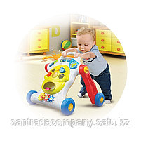 Каталка-ходунки с сортером Music Baby Walker (свет, звук), фото 2
