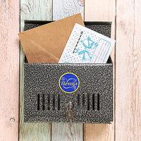 Ящик почтовый с замком, горизонтальный 'Мини', серебристый