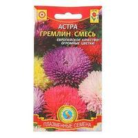 Семена цветов Астра 'Гремлин смесь', О, 0,2 г (комплект из 10 шт.)