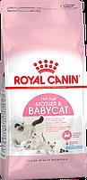 Сухой корм для котят от 1-го до 4-х месяцев и беременных кошек Royal Canin Mother & Babycat