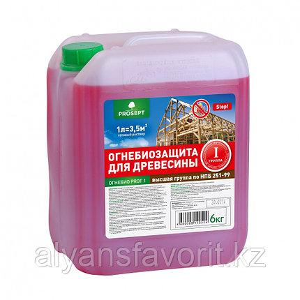 ОГНЕБИО PROF 1 (ПРОФ 1)- пропитка огнебиозащита для древесины .5 литров., фото 2