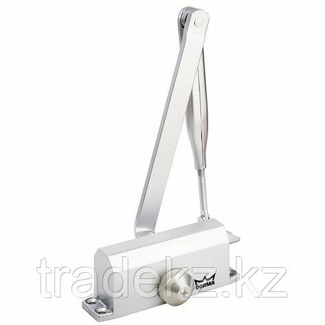Доводчик дверной со складным рычагом Dorma TS NANO EN 2, до 45 кг, белый, фото 2