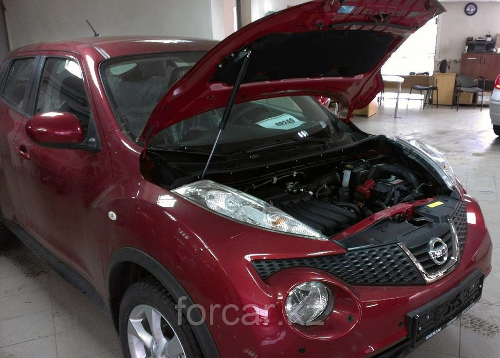 Упоры (амортизаторы) капота для Nissan Juke
