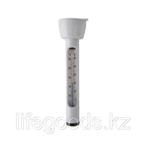 Термометр для бассейна Intex 29039, фото 2
