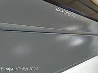 Металлосайдинг глянец Ral 7024