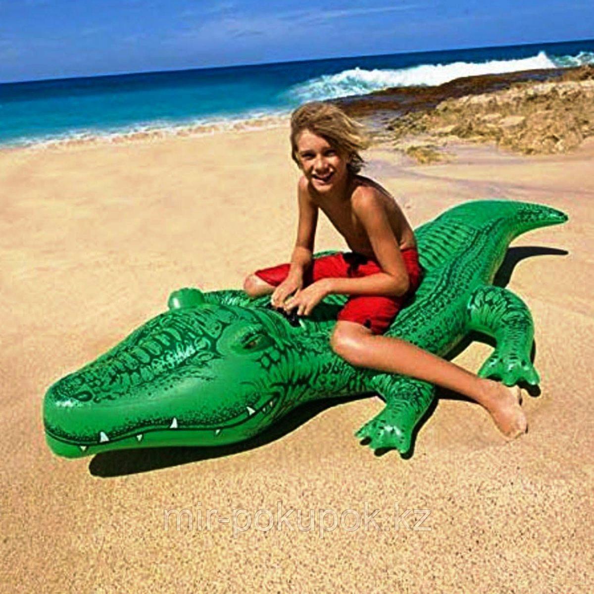 Надувная игрушка-наездник Intex 58546 Крокодил от 3 лет (надувной плот для плавания Крокодил)