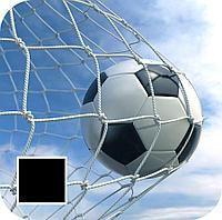 Сетка Футболный Алматы Доставка, фото 1