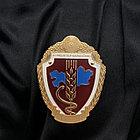 Ордена металлические, фото 5