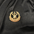 Ордена металлические, фото 6