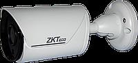 IP камера ZKTeco BS-852K12 / BS-852K13K