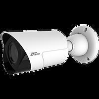 IP камера ZKTeco BL-854N28L