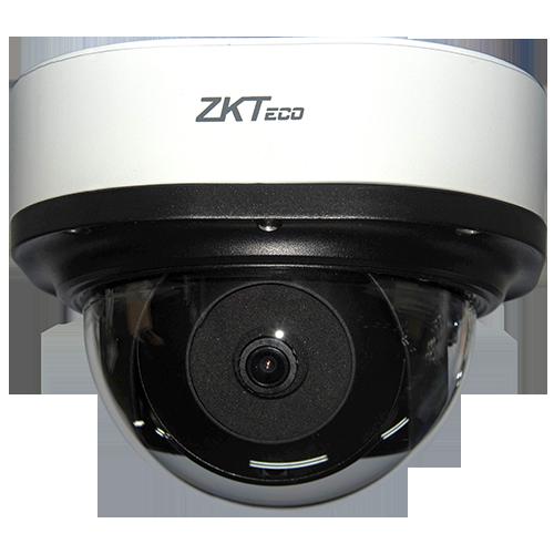 IP камера ZKTeco DL-855P28B