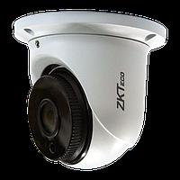 IP камера ZKTeco ES-855P11H / ES-855P12H / ES-855P13H, фото 1