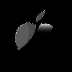 Адаптеры для Apple, iPhone, iPad, iPod