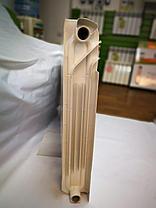 Радиатор UNO-DUPLEX 600/110 Биметаллический, фото 2