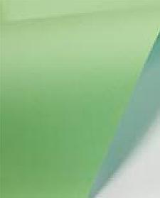 PAPERLINE БУМАГА ЦВЕТНАЯ, А4, 80 гр/м2, GREEN (190) 500л