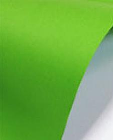 PAPERLINE БУМАГА ЦВЕТНАЯ, А4, 80 гр/м2, PARROT (230) 500л