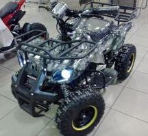 Электрический квадроцикл Дачник 005Д