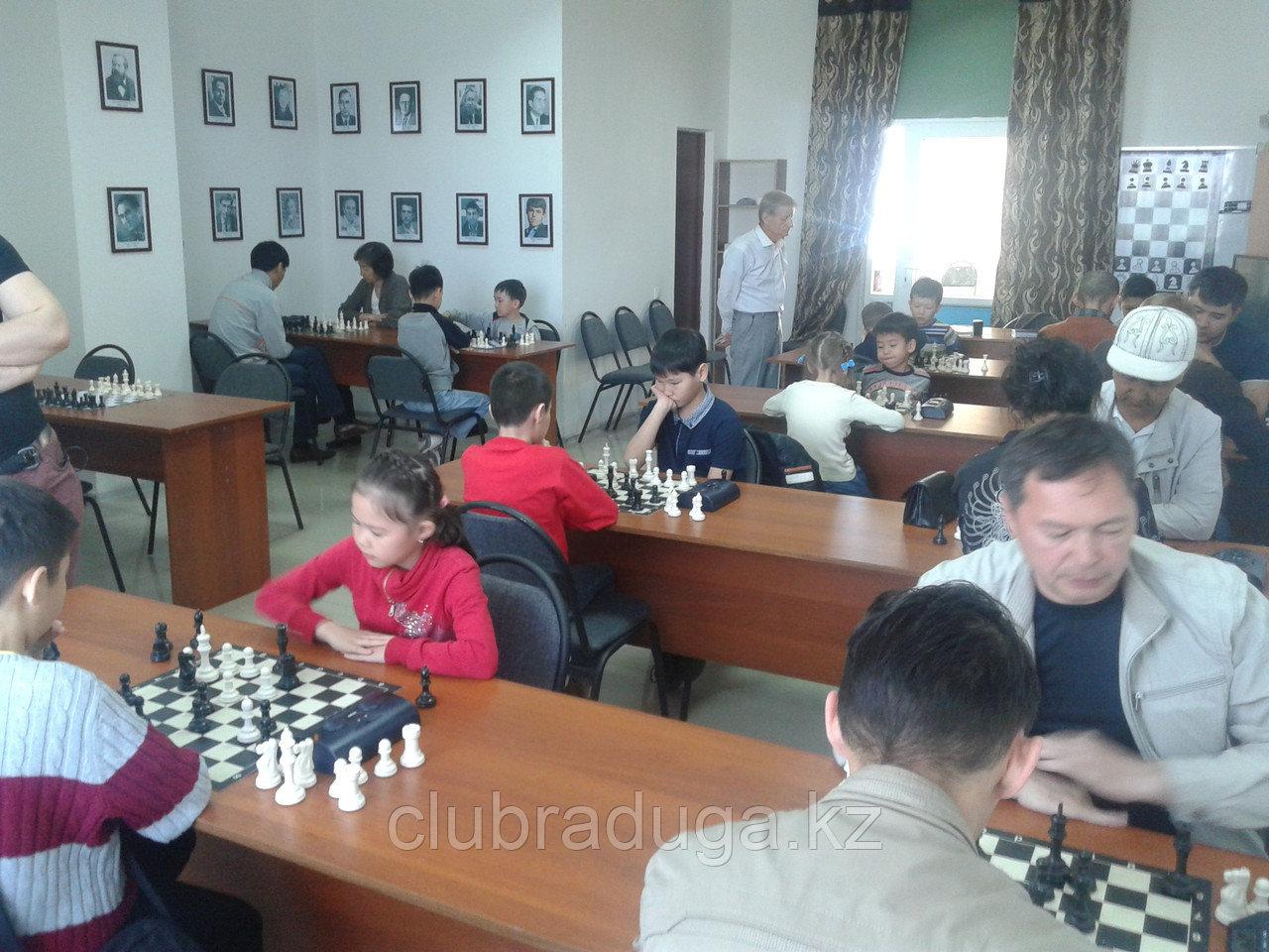 Групповое занятие по шахматам 1 раз в неделю (4 урока в месяц)