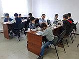 Групповое занятие по шахматам 1 раз в неделю (4 урока в месяц), фото 3