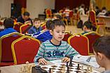Групповое занятие по шахматам 1 раз в неделю (4 урока в месяц), фото 6