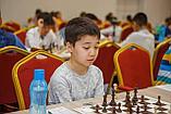 Групповое занятие по шахматам 1 раз в неделю (4 урока в месяц), фото 4