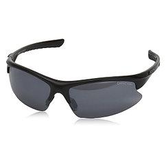 Alpina  очки Dribs 2.0