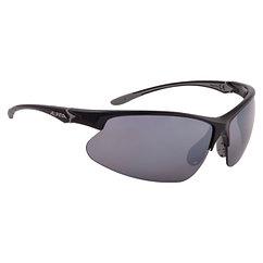 Alpina  солнцезащитные очки Dribs 3.0