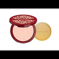 ART-VISAGE Пудра компактная  SILK MATTE для всех типов кожи тон 21 светлый беж