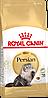 Royal Canin Persian сухой корм для кошек персидской породы