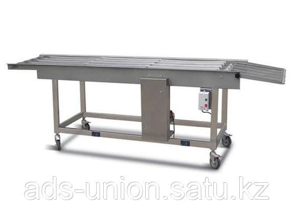 Конвейер для пищевой промышленности, фото 2