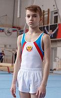 Купальник мужской для спортивной гимнастики СГМ 2.02 Ш FENIX ST
