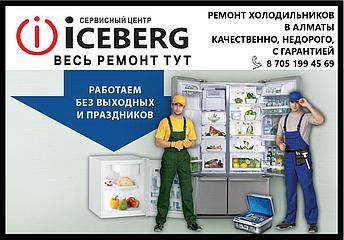 Ремонт холодильника Индезит (Indesit) в Алматы, фото 2