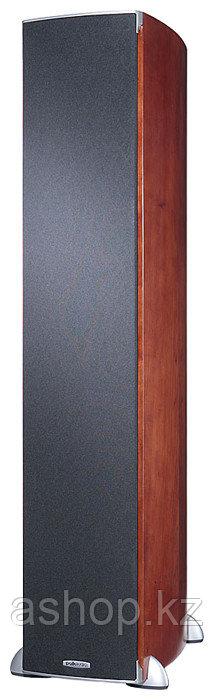 Акустика напольная фронтальная монополярная, четырехполосная, пассивная, фазоинверторная Polk Audio RTi A7, 89