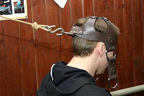 """Упряжь """"Премиум из кожи"""" Головная лямка для шеи. Тренажер для тренировки шеи, фото 3"""