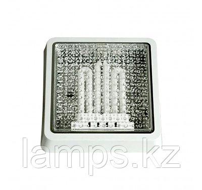 Настенно-потолочный светильник NEVA, фото 2