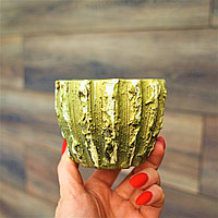 Керамический горшок Кактус