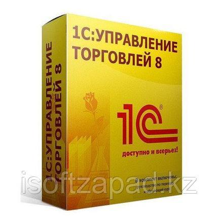 1С:Предприятие 8. Управление торговлей для Казахстана (USB), фото 2