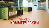 Коммерческий линолеум LG Hausys Durable  2м x20m, фото 2