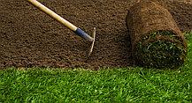 Подготовка территории к посеву газона
