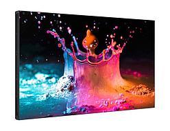 "Samsung LFD панель UD55E-B 55"""