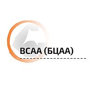 BCAA (БЦАА)