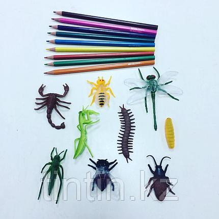 Набор из 10 резиновых насекомых, фото 2