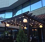 Светодиодный led belt light на стену, гирлянда белт лайт настенная, ретро гирлянда, гирлянда для кафе, фото 3